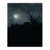 Moonlight Scene, Houses in Background (8×10)