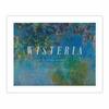 Wisteria (8×10)