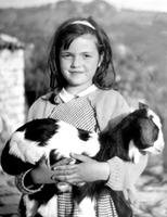 Katia Varvaki's picture