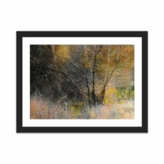 Light Behind Trees (12×16)