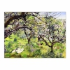 A Cornish Orchard in Spring (12×16)