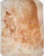 Leonardo da Vinci's picture