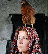 Székely Beáta's picture