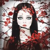 Victoria Obscure's picture