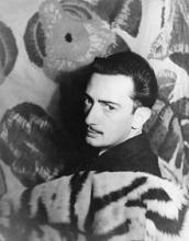 Salvador Dalí's picture