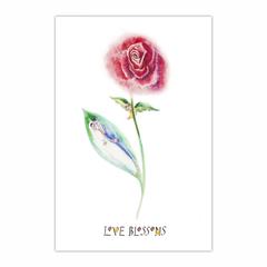 Love Blossoms. (12×18)