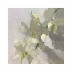 White Orchids (12×12)