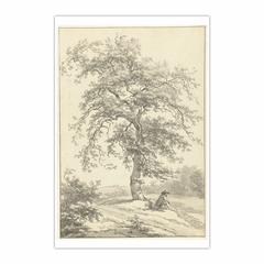 Zittende man onder grote boom, in de omgeving van Eext in Drenthe